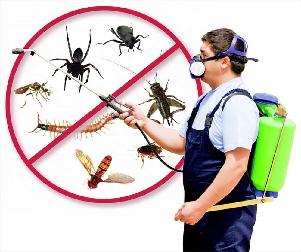 179470-pest-control